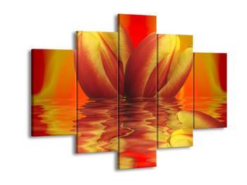 Obraz kvítí tulipánu (F002425F150105)