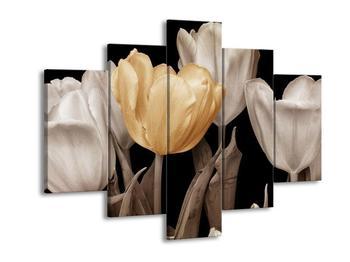 Obraz tulipánů - béžová černobíla (F002478F150105)