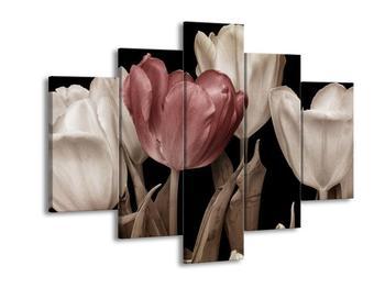 Obraz tulipánů - červená černobílá (F002480F150105)