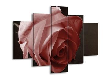 Obraz červené růže (F002481F150105)