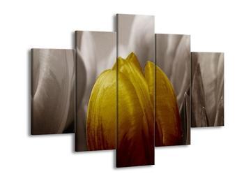 Obraz zlatého květu tulipánu (F002500F150105)