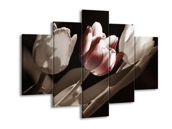 Obraz červeného květu tulipánu (F002505F150105)