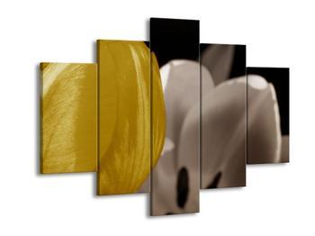 Obraz žlutého květu tulipánu (F002506F150105)