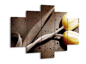 Moderní obraz žlutých tulipánů (F002514F150105)