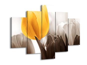 Krásný obraz žlutého tulipánu (F002518F150105)