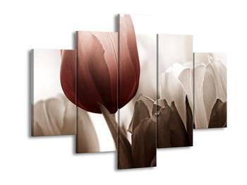 Krásný obraz červeného tulipánu (F002519F150105)