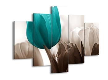 Krásný obraz tyrkysového tulipánu (F002520F150105)