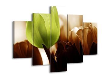 Krásný obraz zeleného tulipánu (F002522F150105)