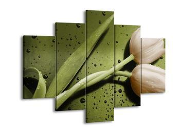Obraz béžových tulipánů  (F002530F150105)