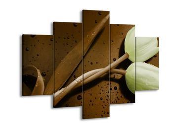 Obraz zelených tulipánů - hnědé pozadí (F002531F150105)