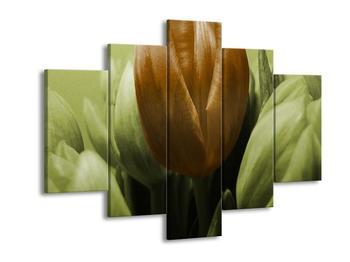 Obraz tří tulipánů - červená zelená (F002536F150105)
