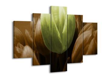Obraz tří tulipánů - zelená hnědá (F002537F150105)