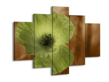 Obraz květu zelené rostliny (F002564F150105)