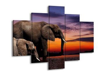 Obraz dvou slonů ve vodě  (F002620F150105)