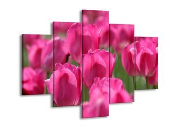 Obraz růžových tulipánů  (F002627F150105)