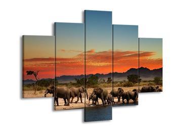 Obraz stáda slonů u napajedla  (F002631F150105)
