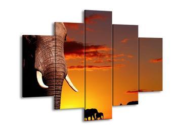 Obraz slona v pozadí s černobílými siluetami  (F002644F150105)
