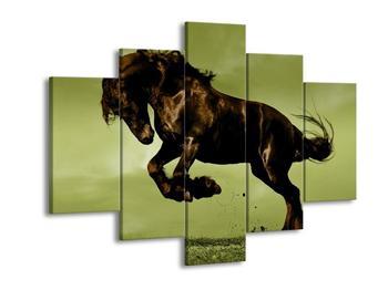 Obraz statného koně  (F002667F150105)