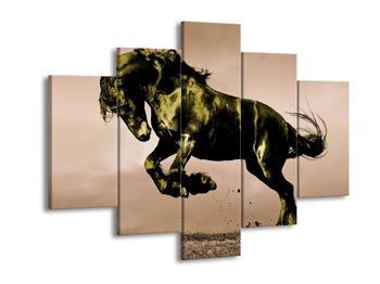 Obraz koně v pohybu  (F002668F150105)