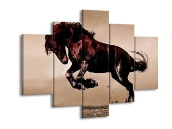 Obraz divokého koně  (F002669F150105)