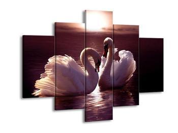 Obraz labutí na jezeře  (F002698F150105)