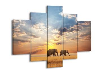 Obraz slonů putujících svanou  (F002703F150105)