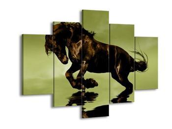 Obraz černého koně na zeleném pozadí  (F002880F150105)