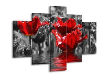 Obraz červených rostlin na vodě  (F002927F150105)