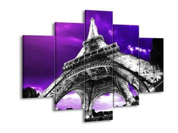 Obraz Eiffelovy věže v Paříži (F003001F150105)