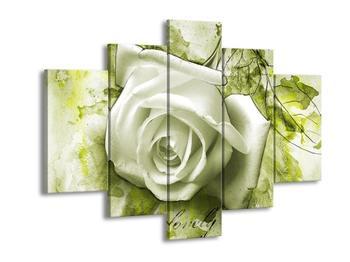 Obraz bílé růže na zeleném pozadí  (F003693F150105)