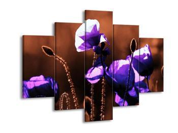 Obraz fialového vlčího máku  (F003808F150105)