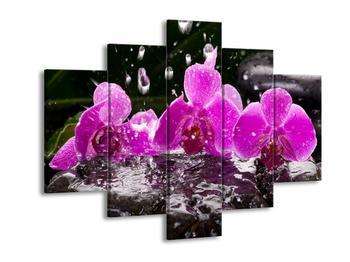 Obraz fialových orchidejí za deště (F004025F150105)