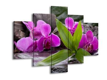 Obraz fialových orchidejí s listím (F004027F150105)