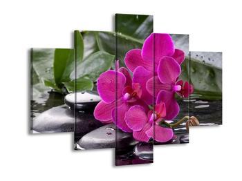 Obraz fialových orchidejí na kamenech (F004045F150105)
