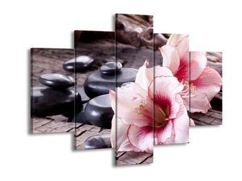 Obraz narůžovělých orchidejí (F004059F150105)