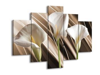 Moderní obraz F004708F150105 (F004708F150105)
