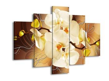 Krásný obraz orchidejí (F005693F150105)
