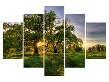 Moderní obraz K010087K150105 (K010087K150105)