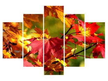 Obraz jesenných listov (K010117K150105)