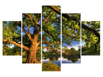 Obraz  stromu u jezera (K010157K150105)