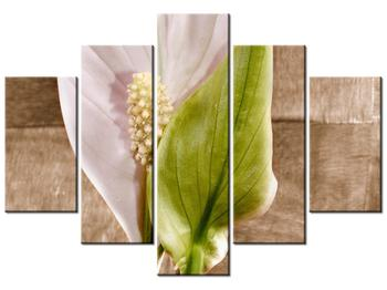 Moderný obraz na plátne K010756K150105 (K010756K150105)