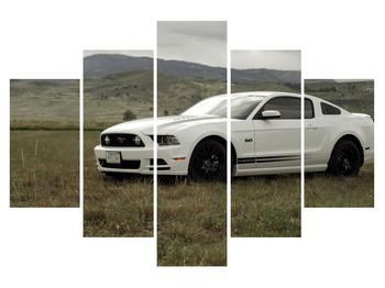 Tablou cu automobile (K010907K150105)