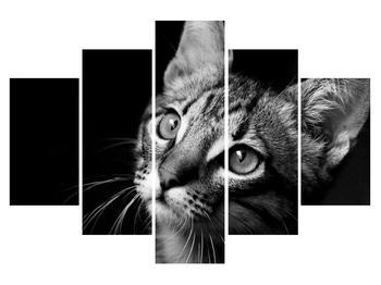 Moderný obraz na plátne K010970K150105 (K010970K150105)