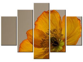 Moderný obraz na plátne K010974K150105 (K010974K150105)