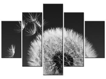 Obraz páperia púpav (K010975K150105)