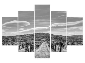 Moderní obraz K011010K150105 (K011010K150105)