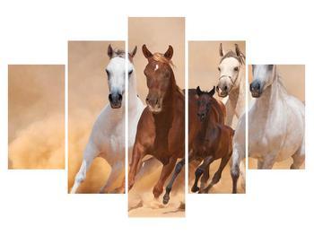 Obraz koní (K011135K150105)