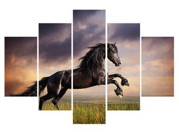 Obraz koní (K011149K150105)