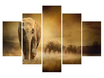 Tablou cu elefant (K011176K150105)