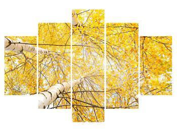 Tablou cu mesteacân (K011197K150105)